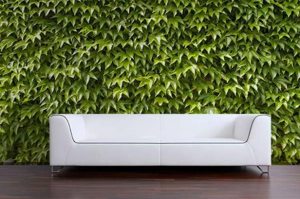 deco mur effet trompe l'oeil feuillage mur vegetal