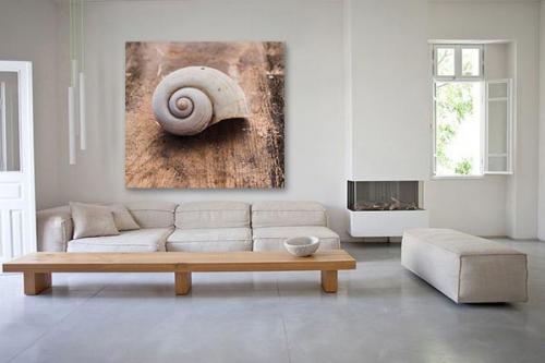 Tableau déco Nautilus shell