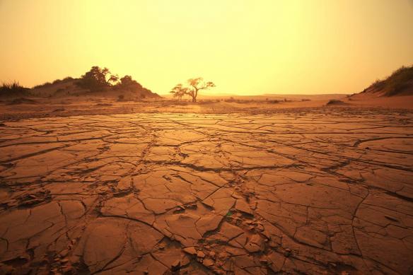 Papier peint panoramique terre craclée