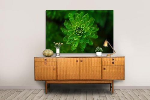 Tableau décoration Focus Vert