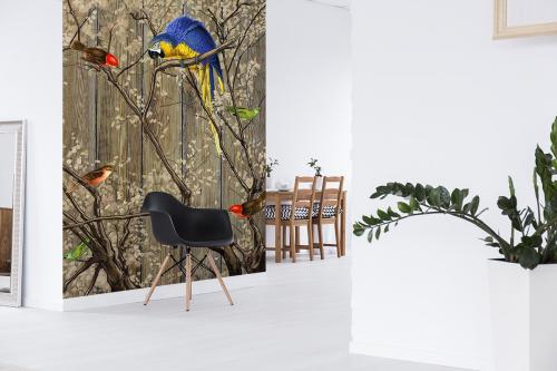 papier peint animaux izoa. Black Bedroom Furniture Sets. Home Design Ideas