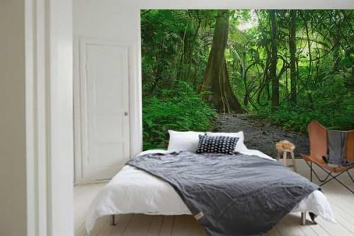 Papier peint Jungle Amazonie