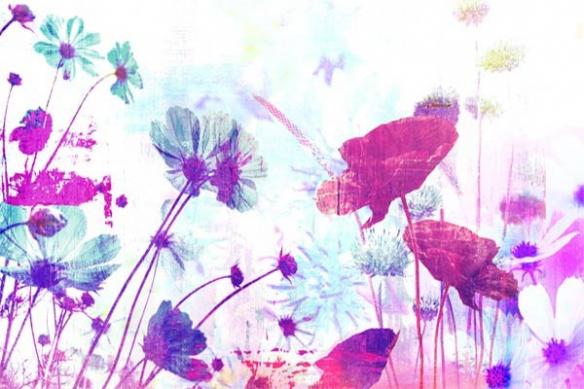 Tableau Fleurs coquelicots déco design