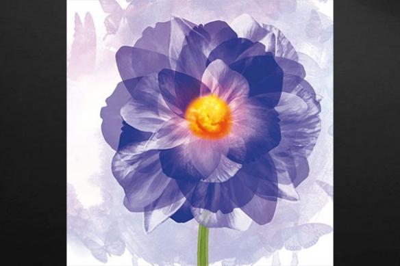tableau déco fleur moderne