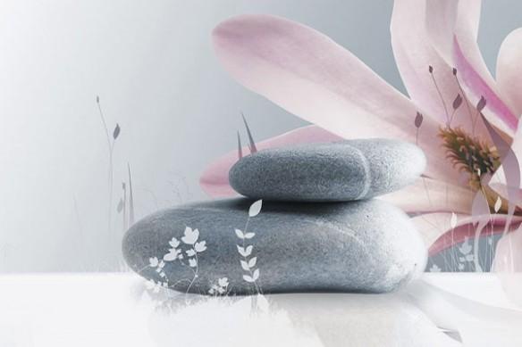 deco mural zen chrysallide et Caillous Fleur