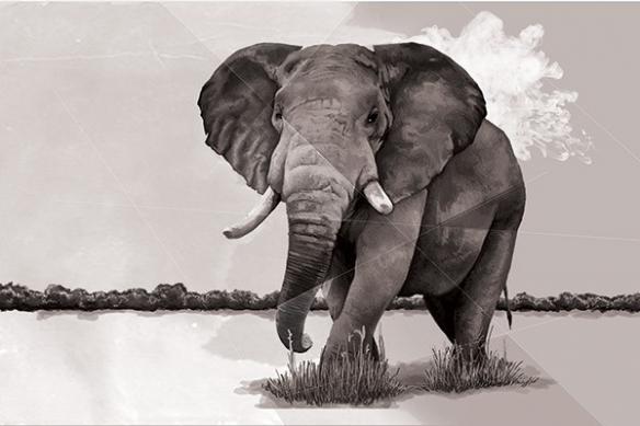 Papier peint Eléphant de la Savane