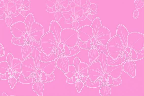 déco mural têtes orchidées rose