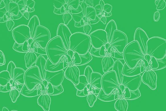 Papier peint design orchidées vert