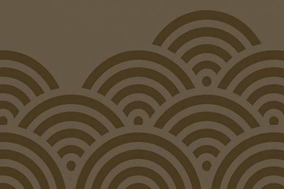 Papier peint design shakan marron