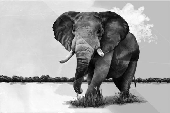 Tableau décoration moderne Eléphants de la savane noir et blanc