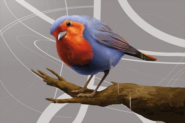tableau d co salomon l 39 oiseau izoa