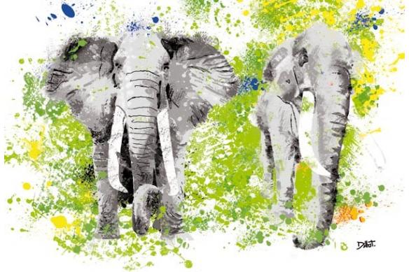 Tableau design  Elephants