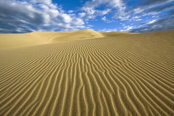 Tableau D 233 Co Desert De Gobi Izoa