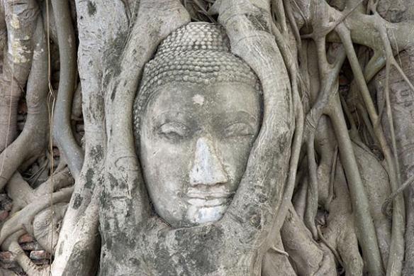 Papier peint zen Siddhartha
