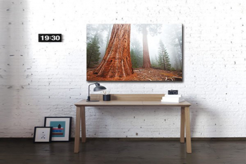 Tableau design forêt