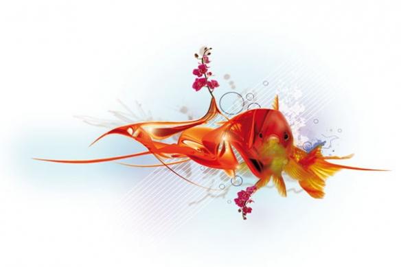Tableau déco Poisson Rouge par Yann Wallaert