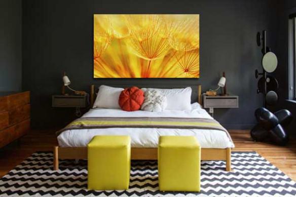 Tableau fleur bain de soleil