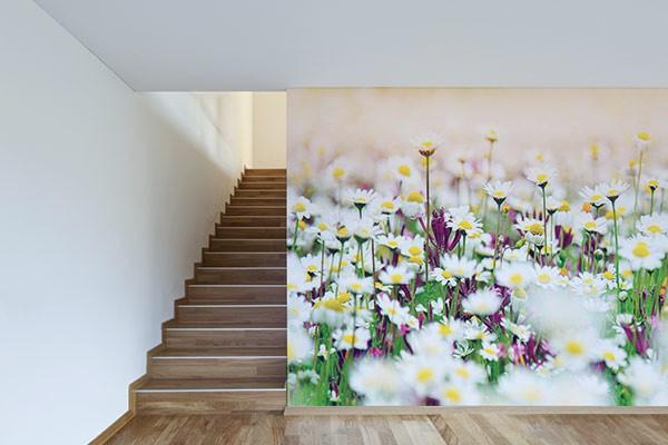 papier peint trompe l 39 oeil plate bande izoa. Black Bedroom Furniture Sets. Home Design Ideas