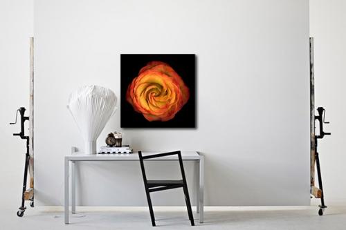 Tableau fleur spiralis