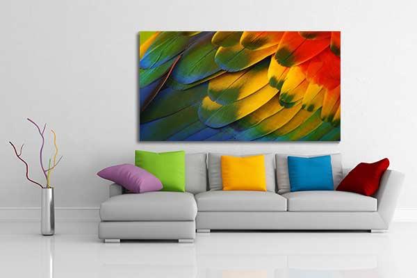 tableau d coration plumes perroquet izoa. Black Bedroom Furniture Sets. Home Design Ideas