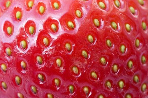 Toile imprimée fraise rouge deco cuisine