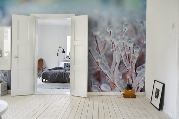Papier peint photo gel matinal