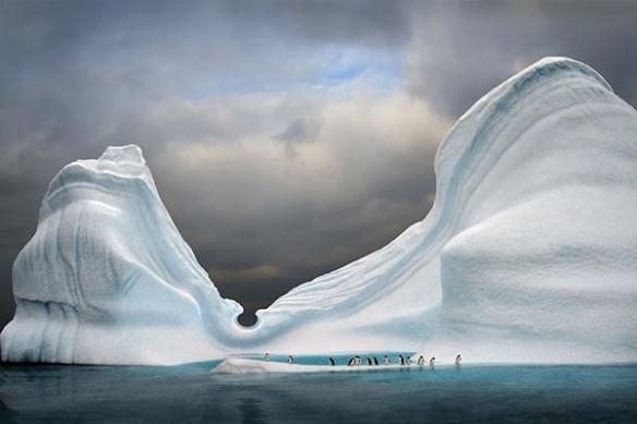 Papier peint mur Arctique
