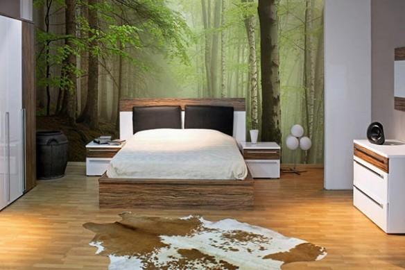 Papier peint décoration Forêt Sapins
