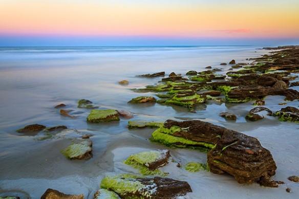 Plage rocher algues