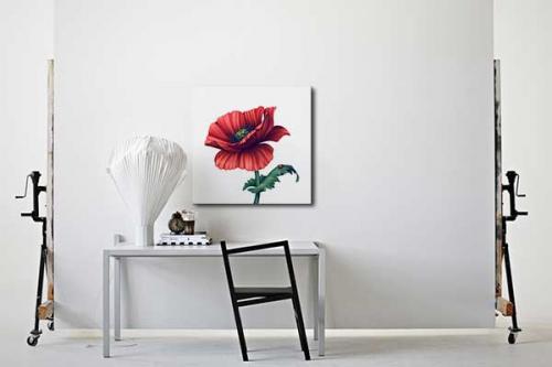 Toile décorative fleur coccinelle