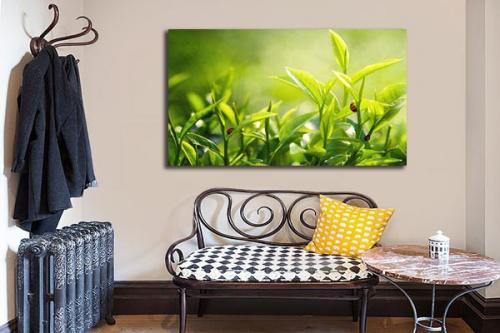 tableau d co design verdure izoa. Black Bedroom Furniture Sets. Home Design Ideas