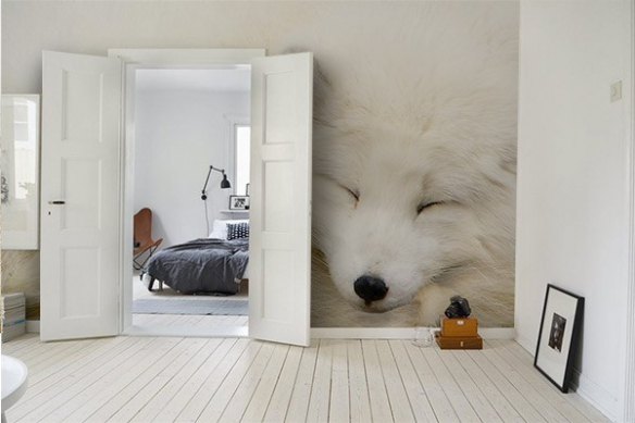 Papier peint photo renard blanc