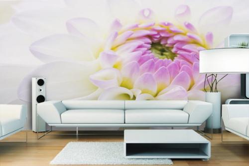 Papier Peint fleur Dahlia