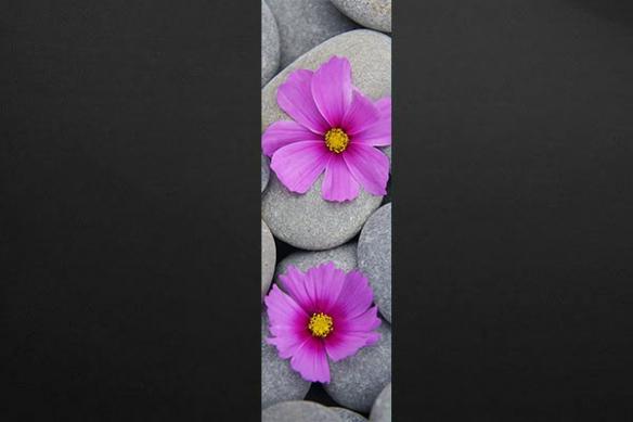 décoration zen fleur violettes