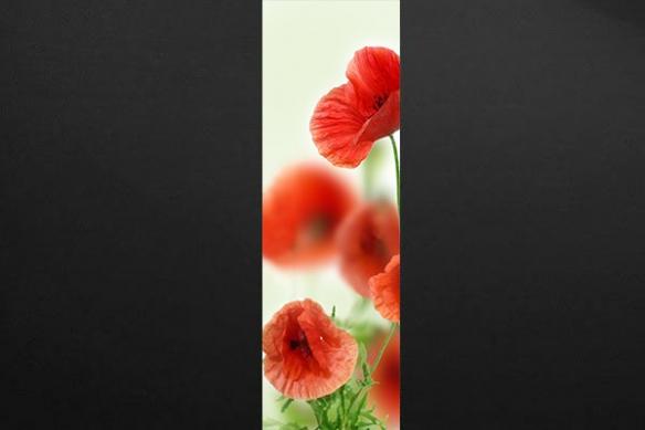 Papier peint déco fleur Coquelicots