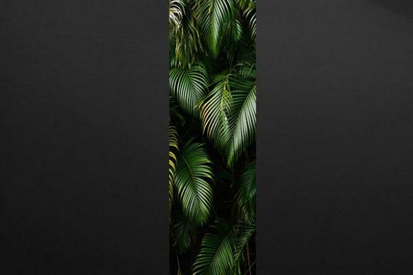 Papier peint feuille palmier