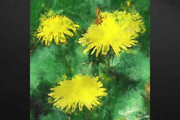 Toile peinture Pissenlit jaune