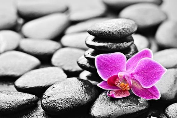 Toile photo zen fleur