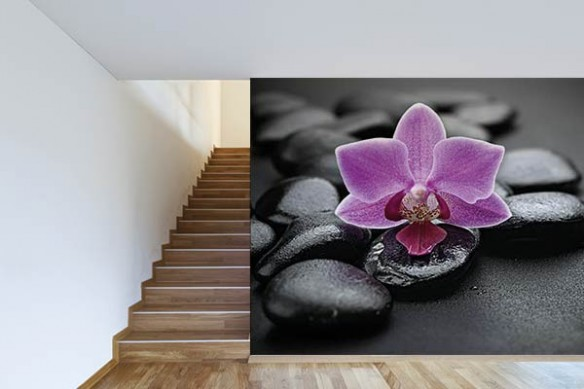 Papier peint déco orchidée violette