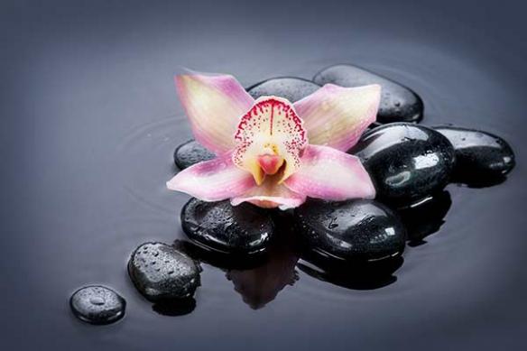 Toile imprimée Fleur Orchidée Zen