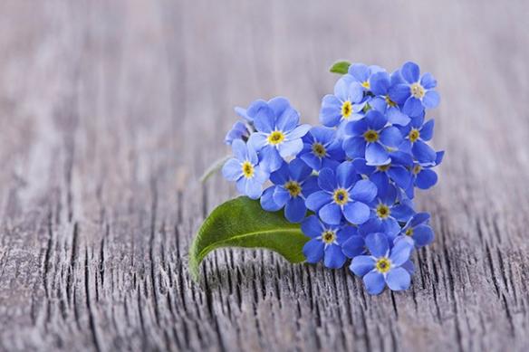 Toile déco coeur en fleur