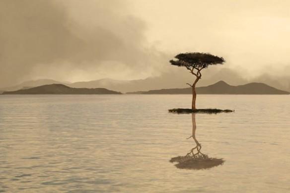Toile zen Méditation Solitaire