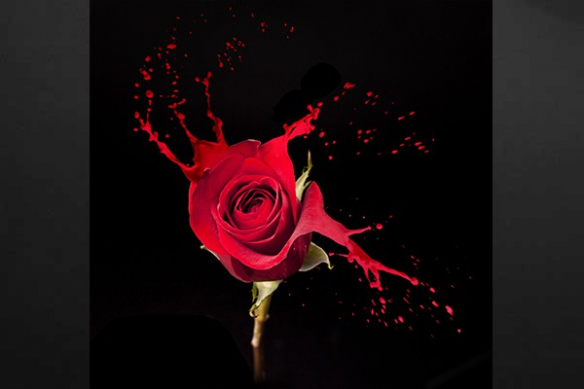 Toile imprimée fleur rose vega