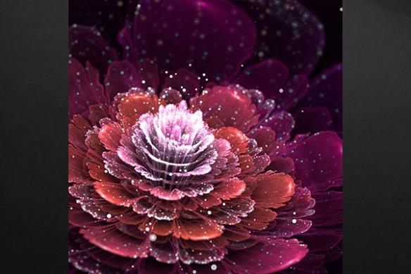 Tableau moderne Rose de Lumière