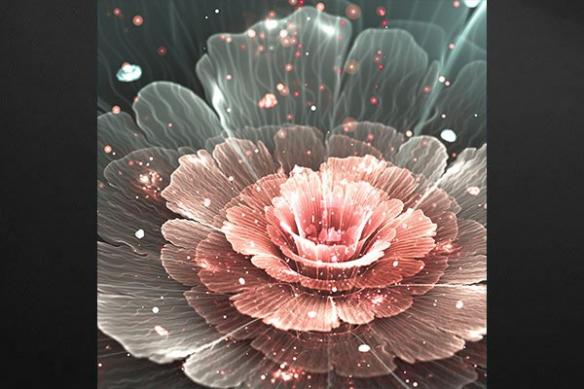 Toile imprimée fleur Pivoine de Chine