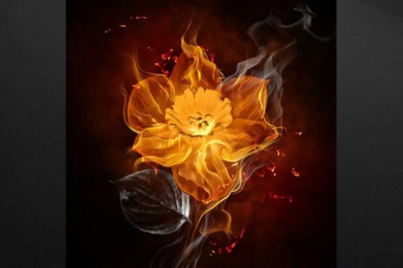 Toile moderne fleur orangée
