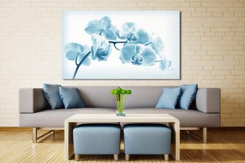 Tableau zen Orchidée translucide
