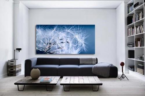 Tableau photo Légèreté bleue