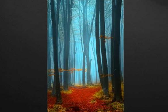 forêt vermeille tableau portrait