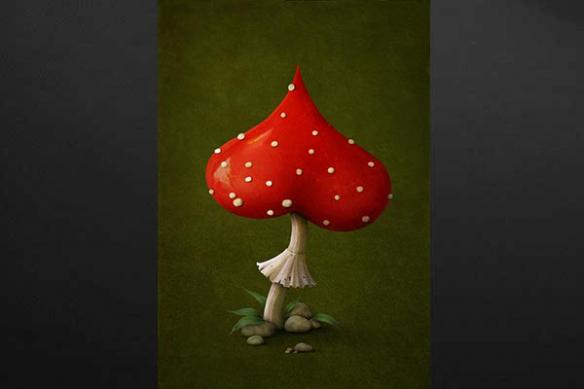 champignon coeur